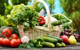 Как защитить овощи от вредителей?