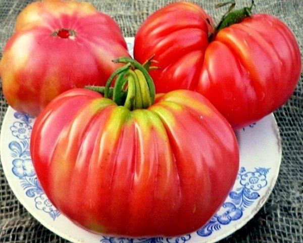 помидор инжир розовый описание сорта фото отзывы