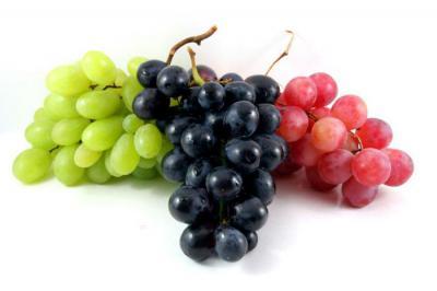 Эффективные методы борьбы с виноградным зуднем клещом