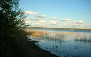 Почвы средней полосы России