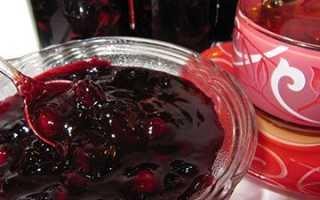Варенье из терна без косточек на зиму: пошаговый рецепт, польза и вред, варианты с апельсином, яблоками, какао, «Пятиминутка»