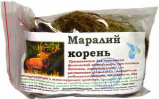 Использование маральего корня в медицине, его лечебные свойства и противопоказания