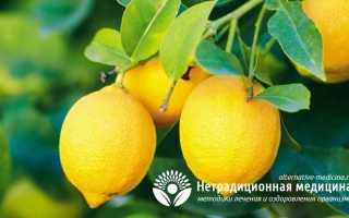 Полезные и опасные свойства лимона