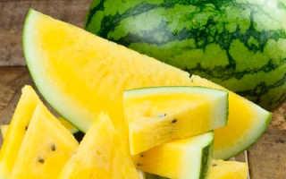 Желтый арбуз: польза и вред, фото, сорта, выращивание и уход