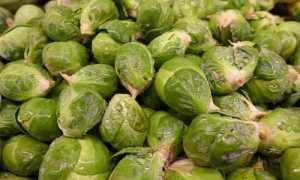 Как заморозить брюссельскую капусту правильно