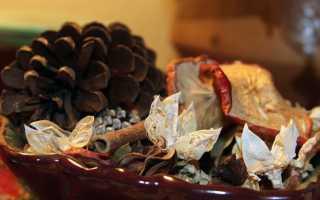Полезные свойства и противопоказания сушеных яблок: заготовка и хранение