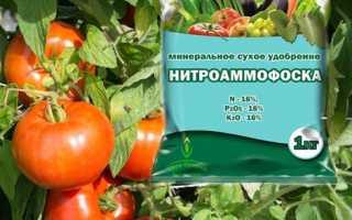 Нитроаммофоска: состав удобрения и применение