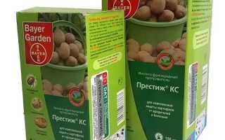 Препарат Престиж: инструкция по применению и обработке картофеля от колорадского жука, какой вред для здоровья