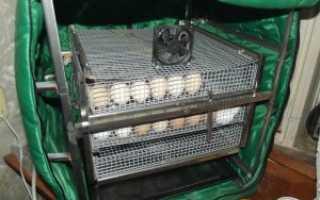 Инкубатор ТГБ 280: описание и характеристики, вместимость яиц