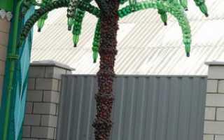 Как сделать пальму из пластиковых бутылок, поделки для сада своими руками