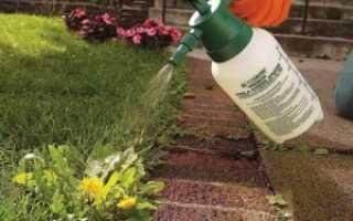 Какие выбрать гербициды от сорняков