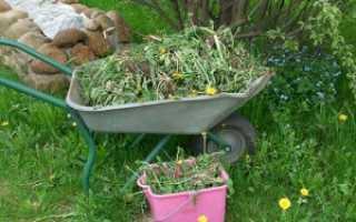 Избавляемся от сорняков, изпользование Раундапа
