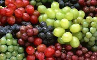 Можно ли есть виноград на ночь? Сколько переваривается виноград в желудке? Какой виноград полезнее