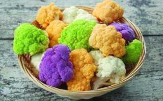 Лучшие сорта цветной капусты для открытого грунта: дачница, коза дереза