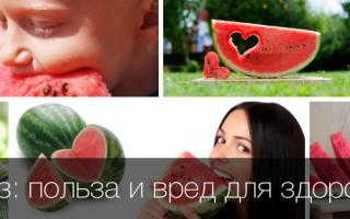 Арбуз: польза и вред для здоровья и организма человека