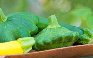 Патиссоны – выращивание и уход
