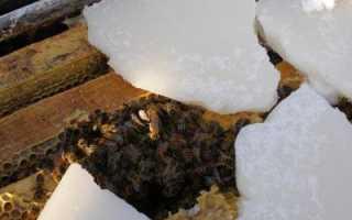 Зимовка пчел на воле: под снегом, без утепления