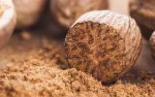 Мускатный орех: польза и вред для человека, Food and Health