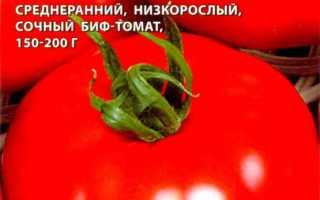 Томат Султан F1: отзывы тех кто сажал помидоры об их урожайности, характеристика и описание сорта семян, фото куста