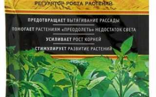 Регулятор роста «Коренастый»: описание и применение