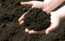 Раскисление почвы весной