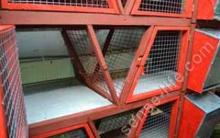 Пол в клетке для кроликов, Вопросы проктологии