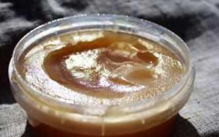 Чем полезен подсолнечный мед? Мед подсолнечный: свойства, цена, польза