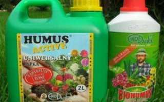 Как использовать биогумус жидкий: инструкция по применению