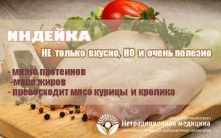 Мясо индейки — полезные свойства и секреты вкусного приготовления
