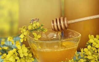 Рапсовый мед, польза и вред, как хранить рапсовый мед — Популярно о здоровье