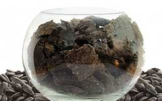 Жмых подсолнечный: что это такое, как используют отходы подсолнуха