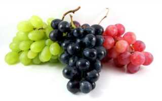 Виноградный клещ — методы борьбы