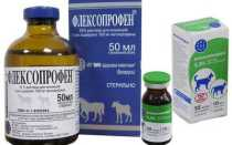 Флексопрофен для кошек: инструкция по применению