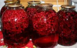 Компот из красной смородины на зиму — простые рецепты заготовки