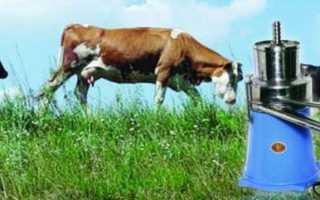 Сепараторы для молока: виды, принцип работы, отзывы