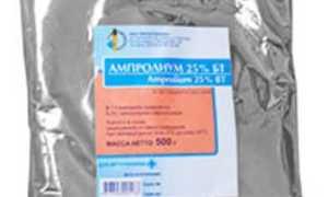 Ампролиум: инструкция по применению в ветеринарии
