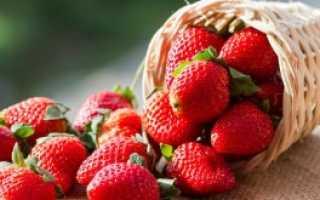 Мульчирование клубники: нужно ли мульчировать ягоду и как это сделать