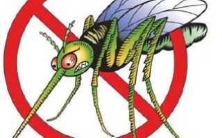 Защита от комаров в домашних условиях народными средствами