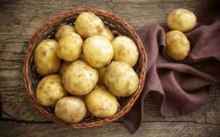 Картофель Санте (Сантэ): описание сорта, характеристики, советы по выращиванию и хранению
