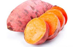Батат (сладкий картофель): польза и вред, описание, состав