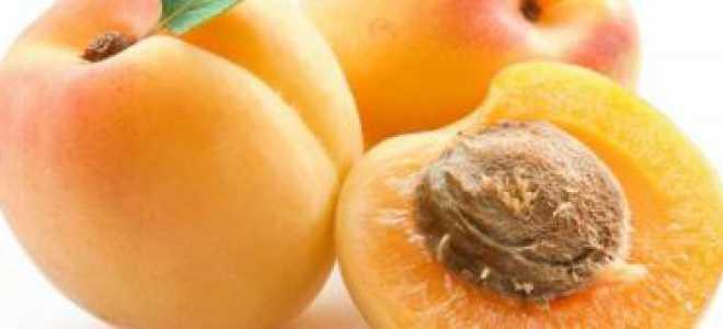 Абрикос: полезные свойства и противопоказания для человека