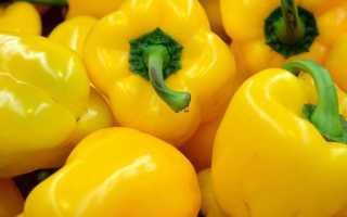 Что необходимо знать о возделывании перца в открытых условиях