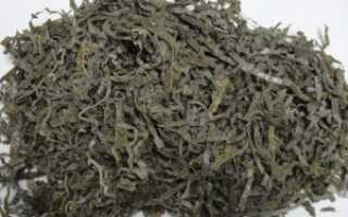 Сушеная ламинария (морская капуста): применение, полезные свойства и противопоказания