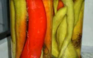 Как законсервировать горький перец на зиму, без стерилизации, в масле, рецепты