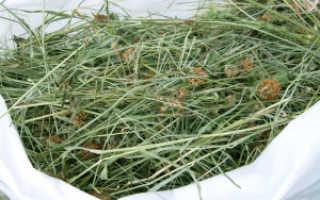 Сено для кроликов — какое сено лучше как заготовить и сколько нужно кролику