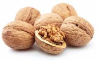 Как сушить грецкие орехи после сбора урожая в домашних условиях