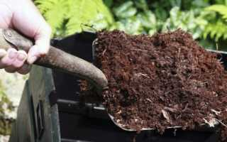 Компост: что это такое, как сделать своими руками, как приготовить компост на даче