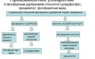 Удобрение Суперфосфат: состав, применение, использование
