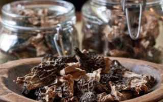 Как сушить грибы в микроволновке?