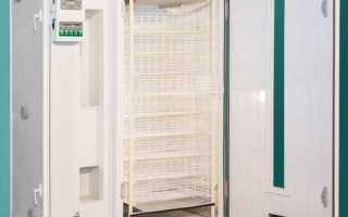 Инкубатор Рэмил: отзывы про 550цд, 1000, 3000цу